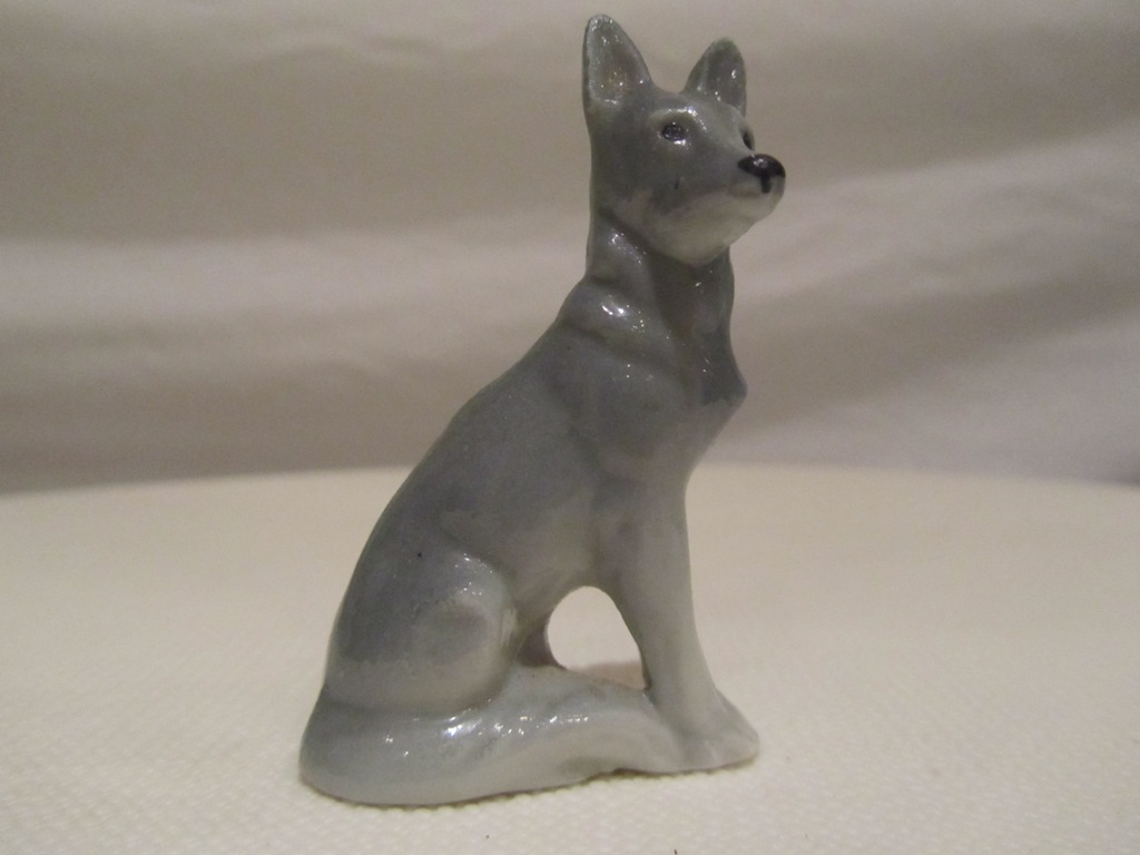 Minature grey dog